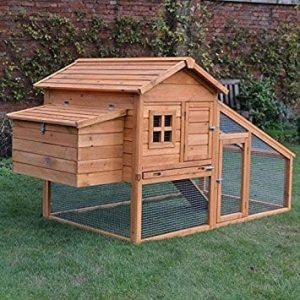 Large 5 Hen Coop